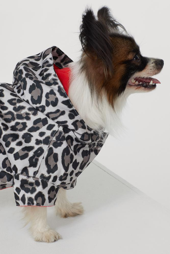 Model wears a reflective dog jacket, £14.99, H&M