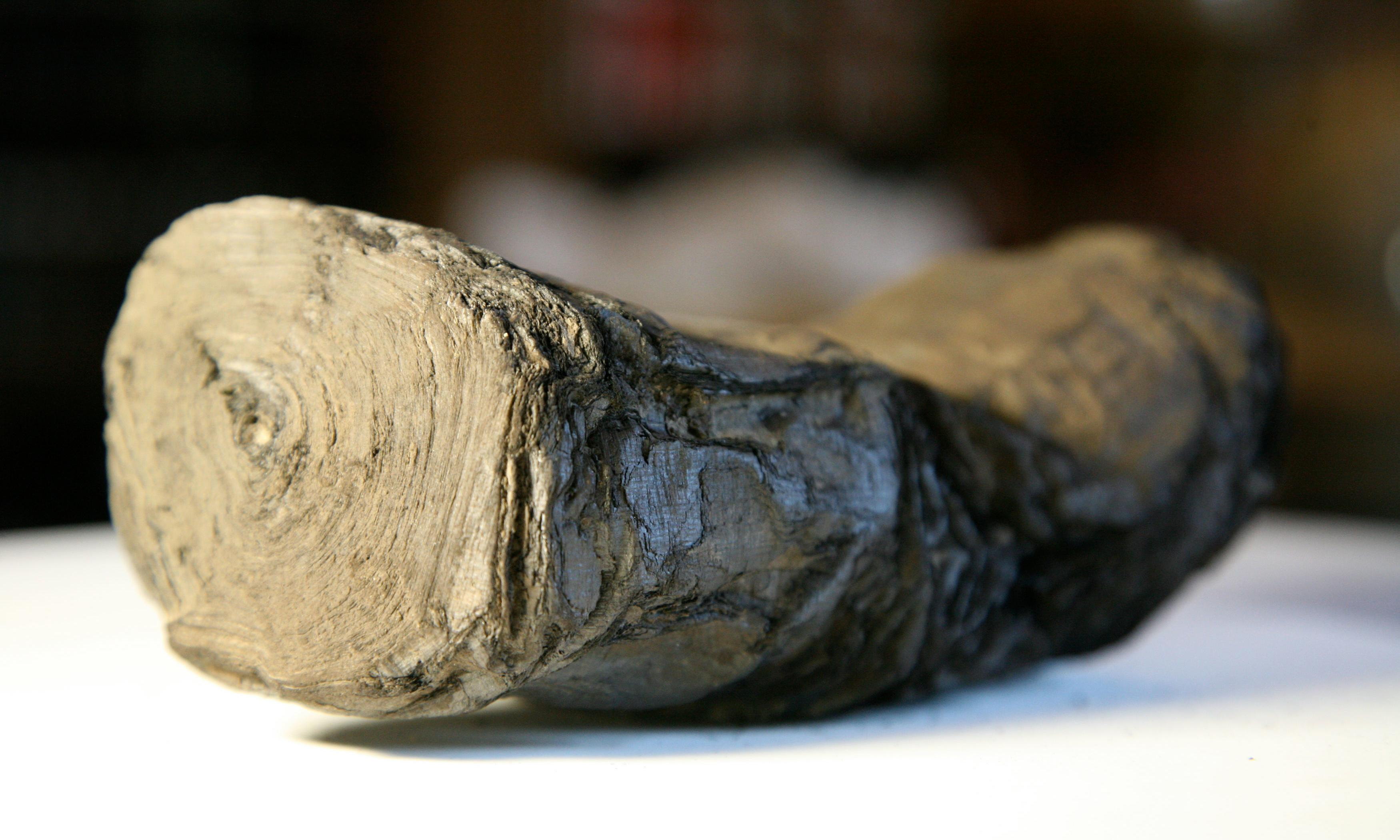 Ancient scrolls charred by Vesuvius could be read once again