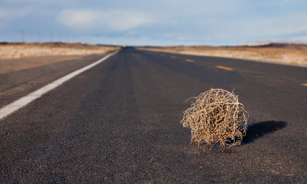 More tumbleweed then, is it?