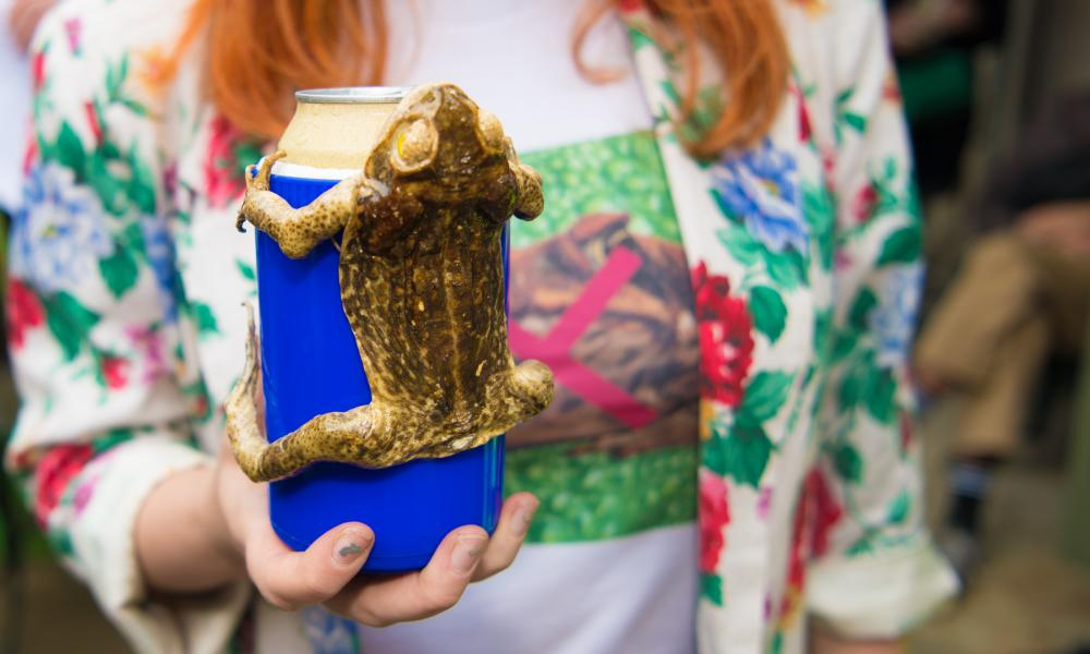 A cane toad stubby holder at Toad Busting