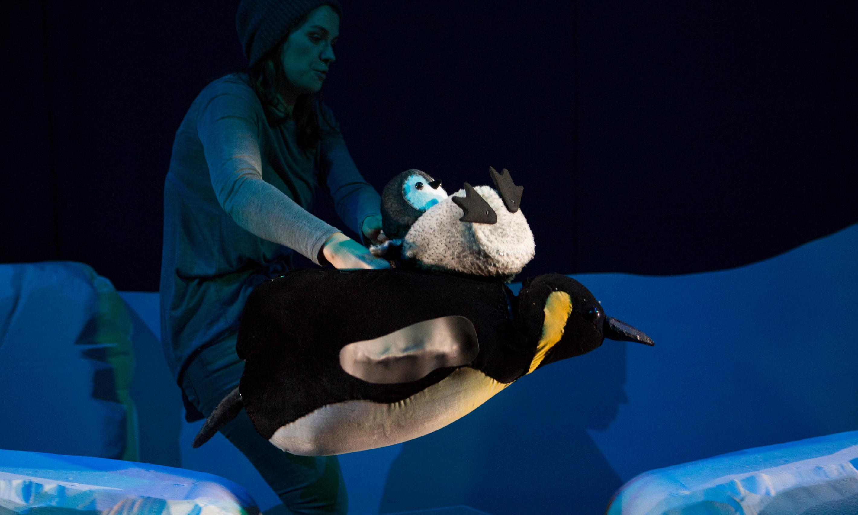 Me … review – Emma Dodd's plucky penguin waddles into the big world